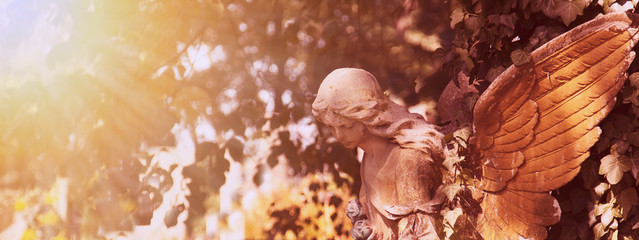 Wall Mural - Vintage image of a sad angel on a cemetery against the backgroun