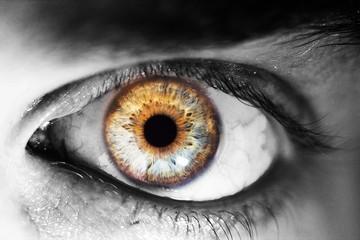 beautiful human eye, macro, close up  blue, yellow, brown, green