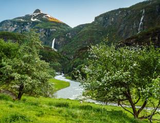 Green Norwegian Mountain Valley