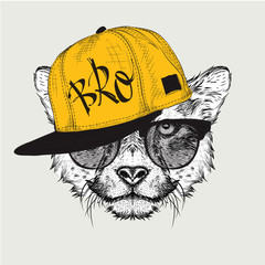 The poster with the image cheetah portrait in hip-hop hat. Vector illustration.