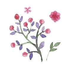 Watercolor floral vector set.
