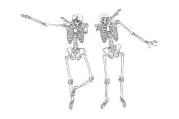 Human skeletons dancing DAB like friends, perform dabbing move gesture in group, posing isolated on white background, vector.