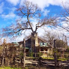 Shack or farmhouse.  Old house in Texas.  Old trees surrounding it.