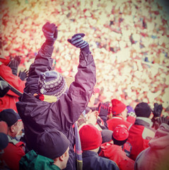 Fan celebrating in the stands at an american football game. Inst