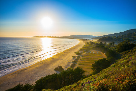 Sunset over Stinson Beach just north of San Francisco, California, USA.  Spring flowers in the foreground.