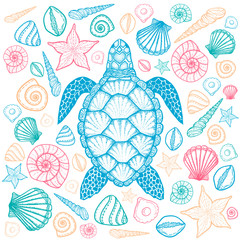 Sea turtle and shells in line art style. Hand drawn vector illustration