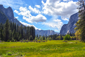 Yosemite National Park and its beauty.