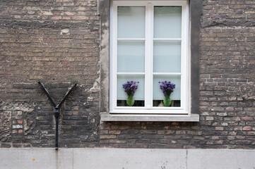 Fenster mit Blumenvasen