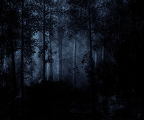 Dark blue forest with the mystical fog. Great for web templates backgrounds.