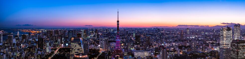 東京タワーと東京都心の夕景・夜景
