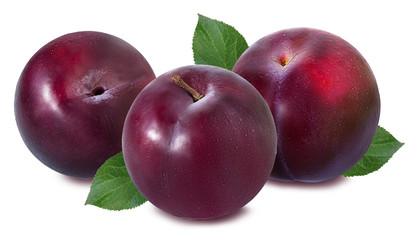 Fototapete - plum on a white