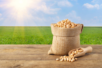 chickpea in bag on nature background