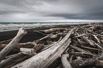 Driftwood on black sand