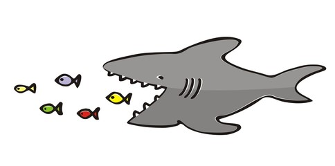 shark and fish, vector illustration