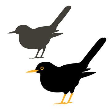 blackbird vector illustration style Flat set silhouette