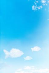 Fish shapes on a sunny blue sky.