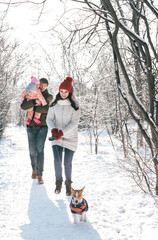 Young family - mother, father, baby and dog in a winter park