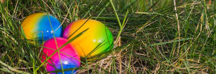 Bunte leuchtende  Eier im hohen Gras
