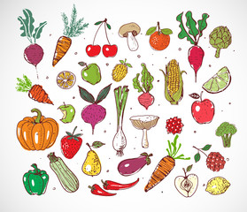 Doodle sketch fresh colored fruits and vegetables on white background