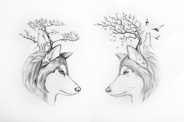 Sketch of two Huskies tree and cats on white background.