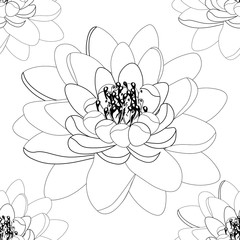 lotus flower Coloring seamless pattern.  illustration