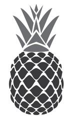 vector pineapple