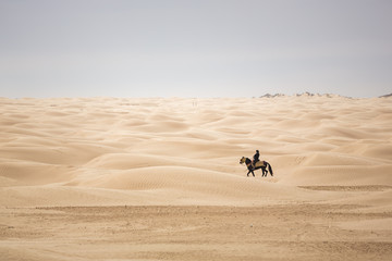 A horseback rider in the Sahara desert, Tunisia.