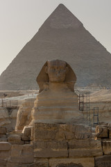 Sphinx in Giza Pyramids - Cairo, Egypt