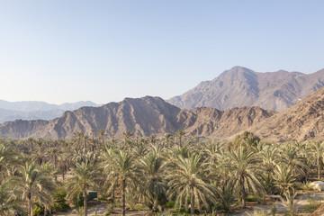 Landscape in Fujairah, UAE