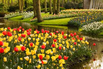 Deurstickers Groene spring garden