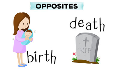 Opposite flashcard for birth and death