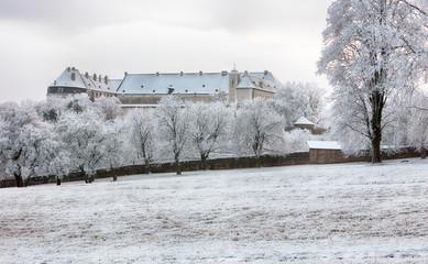 Winter tree with castle Cerveny Kamen, Slovakia