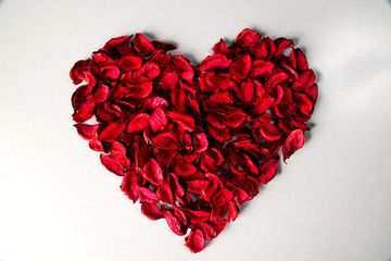 the red heart of petals on white background