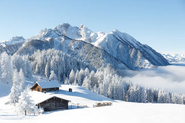 Fototapete - Winterwonderland in the Alps