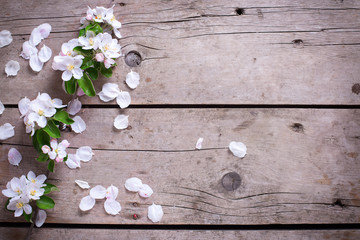 Tender spring apple tree flowers on aged vintage wooden backgrou