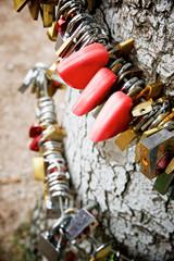 Love padlocks view