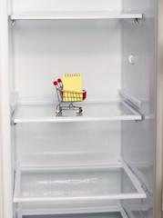 empty refrigerator shopping list