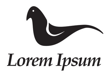 bird logo, icon, vector illustration.