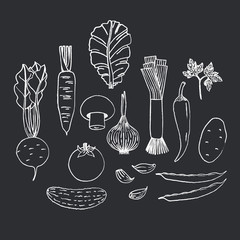 Set of hand drawn vegetables on black background