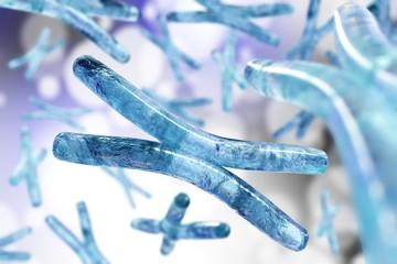 Chromosome.