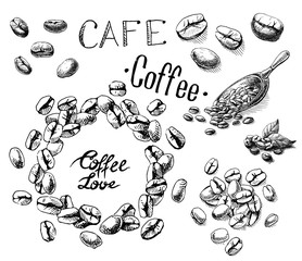set of coffee beans and leaves and scoop in graphic style