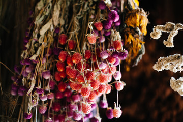 dried flowers hanging in a barn