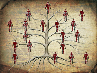 family tree illustration