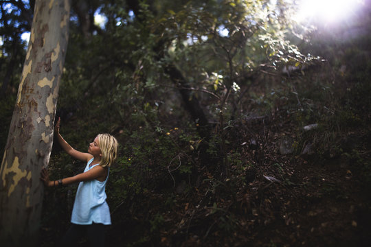 Girl touching tree trunk in forest