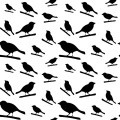 Pattern with black silhouettes of birds.