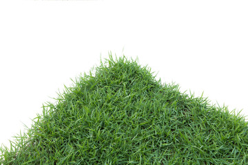 Grass isolated on white background.corner.