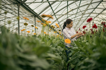 Teenage girl working in a greenhouse.