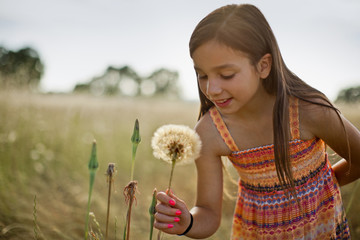 Smiling young girl picking a dandelion seed head in a grassy meadow.