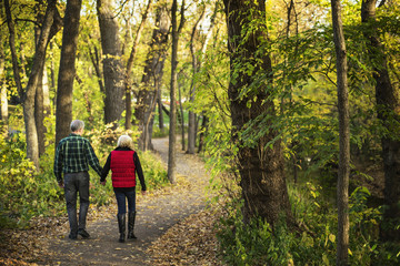 Rear view of senior couple holding hands while walking on road