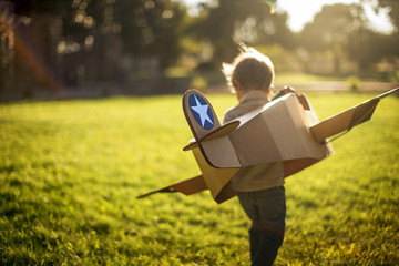 Young boy plays with his cardboard box plane in a sunny garden.